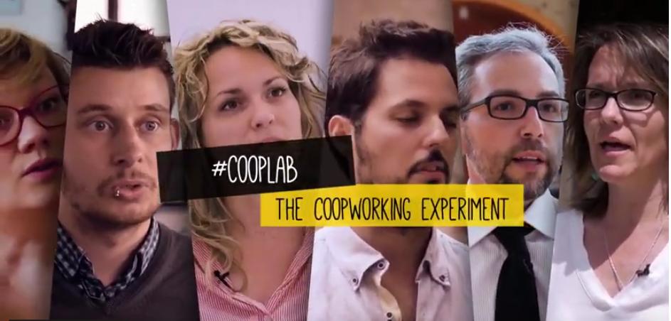 ¿Para qué los jóvenes buscan el trabajo cooperativo?