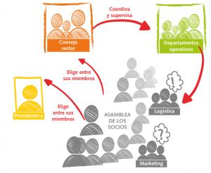 estructura cooperativa