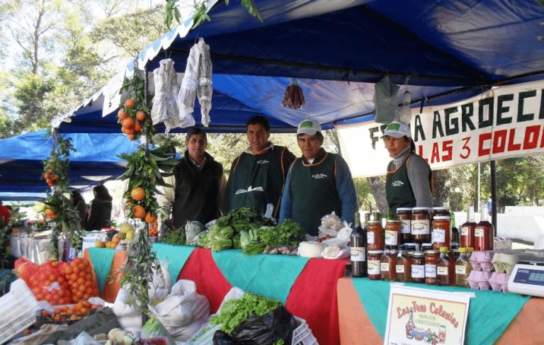 Alimentación saludable y Economía Social y Solidaria. El potencial de los sistemas agroalimentarios locales